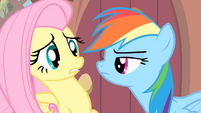 Rainbow looking at Fluttershy S4E07