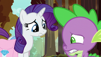 Rarity feeling more sorry for Spike S8E11