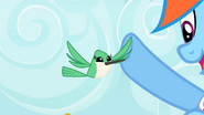 S2E07 Hummingbird high-fiving Rainbow Dash