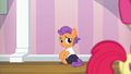 Tender Taps watching Apple Bloom leave S6E4.png