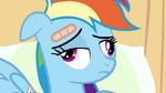 Weird face Rainbow Dash S2E16