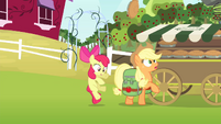 Apple Bloom accidentally hits Applejack S4E17