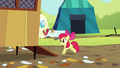 Apple Bloom runs into chicken coop S5E17.png