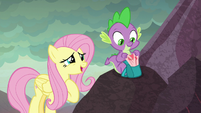 "Fluttershy ""do you mind if I take a peek"" S9E9"
