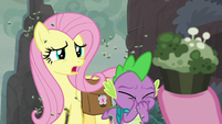 "Fluttershy ""um, we didn't"" S8E25"