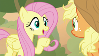Fluttershy -squirrels told me a shortcut- S8E23