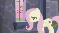 Fluttershy feels down S5E02