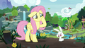 Fluttershy watching Angel eat S8 opening.png