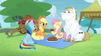 Rainbow, Applejack, Fluttershy and Bulk together S4E10