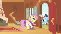 Rainbow Dash at the door looking at Fluttershy S2E22