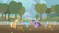 Rainbow Dash flying towards the ground S1E3