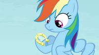 Rainbow with a horseshoe on her hoof S4E10