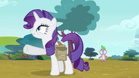 Rarity -I'm thinking we go by chariot- S4E23