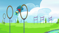 Sky Stinger flies clumsily through rings S6E24.png