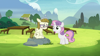 Sweetie Belle -I'm sure that's not true- S7E6
