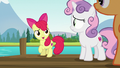 "Apple Bloom ""it's a swell idea!"" S7E21.png"