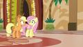 Applejack and Fluttershy in mild surprise S6E20.png
