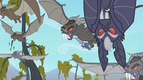 Bats going after the apples S4E07