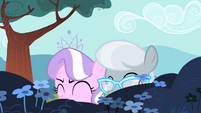 Diamond Tiara and Silver Spoon laughing S4E05