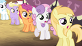 Fillies looking shocked S4E13.png