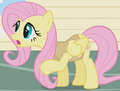 Fluttershy animal team ID S1E11.png