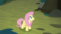 Fluttershy watches fake Rainbow fly away S8E13