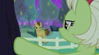 Grand Pear glaring angrily at Granny Smith S7E13