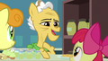Grand Pear introduces himself to Apple Bloom S7E13.png