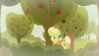 Granny Smith looking for Applejack S9E10