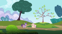 Long-distance view of Twilight and Fluttershy S1E01