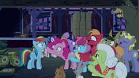 Ponyville ponies say --gotcha!-- to Rainbow S6E15