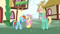 """Rainbow """"we're going to Wonderbolts Headquarters"""" S6E11.png"""