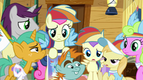 Rainbow Dash Fan Club members confused S8E20