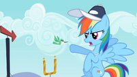 Rainbow Dash with the hummingbird S2E07