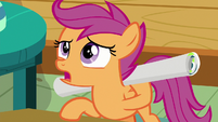 "Scootaloo ""you eavesdrop on every meeting?"" S8E20"