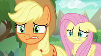 AJ and Fluttershy look very concerned S8E23