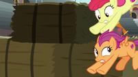 Apple Bloom and Scoot jump into hiding S9E22