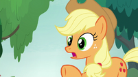Applejack -there's still plenty o' time- S8E9