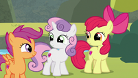 Cutie Mark Crusaders smiling at each other S8E6