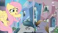 Fluttershy 'You look really busy' S3E1.png