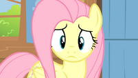 Fluttershy looks at Breezies S04E16
