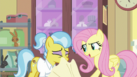 Fluttershy pulls towel off of Dr. Fauna S7E5
