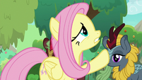 Fluttershy worried about the forest S8E23