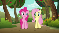 Pinkie Pie --if anypony in this town cares-- S6E18
