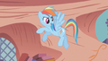 Rainbow Dash continues talking to the main 6 S1E07.png
