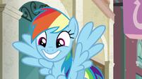 Rainbow Dash grinning wide S6E9