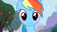 Rainbow Dash happily awaits her cider S2E15