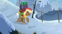 Rare Find carrying a heavy load S8E16