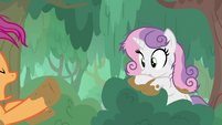 Scootaloo startled by Sweetie Belle S9E22