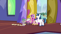 "Shining Armor ""we'll just put Flurry's things over here"" S7E3"